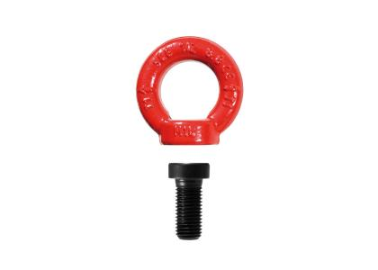 EYE BOLT WITH SCREW 8.8